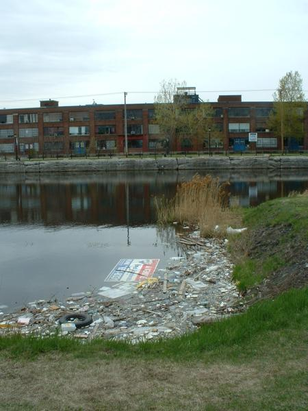 Canal-pollution