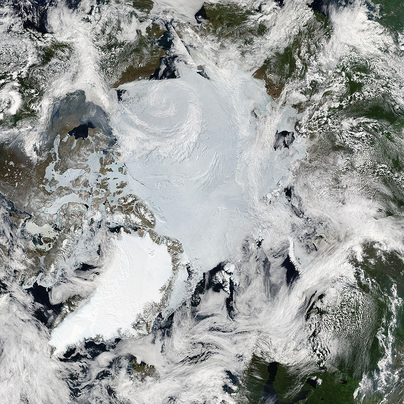 MODIS image of the Arctic