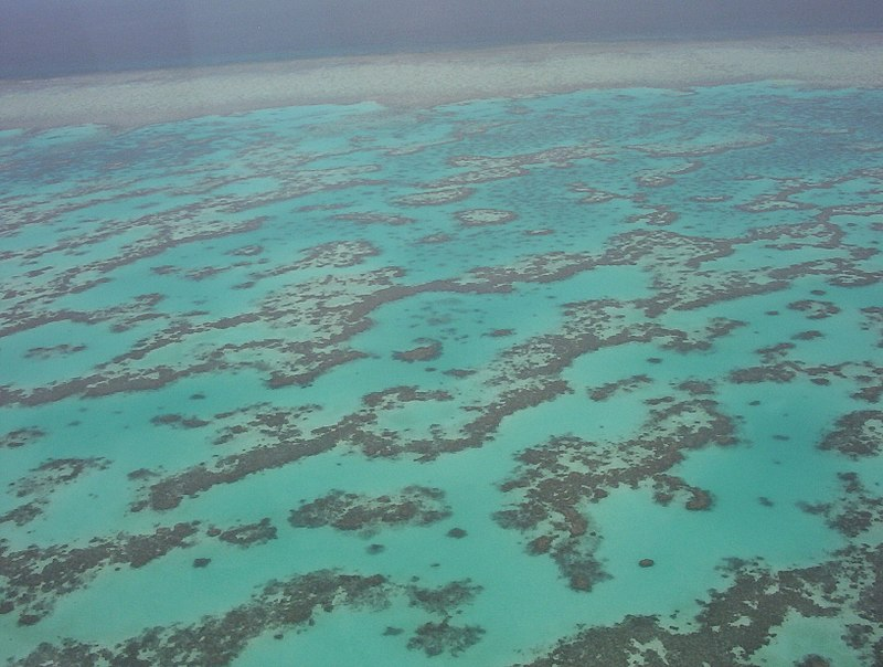 Part_of_Great_Barrier_Reef_from_Helicopter